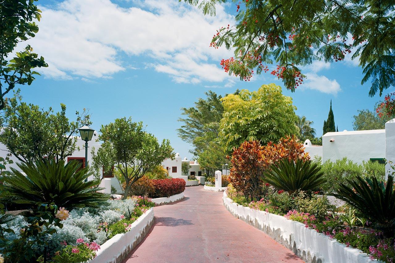 Se bilder fra jardin tecina la gomera bestill ferien for Jardin tecina
