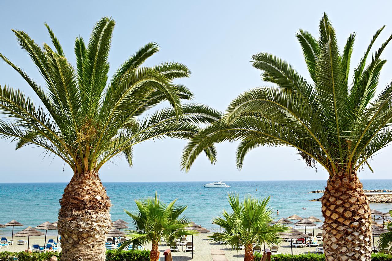 Kypros - Limassol
