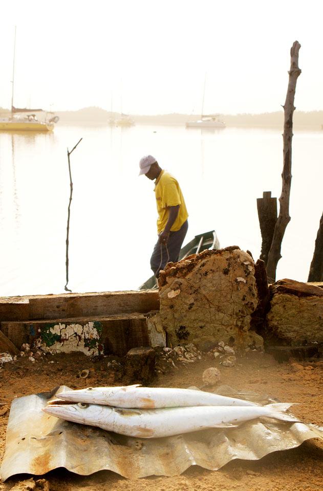 Gambia - Gambiaelven