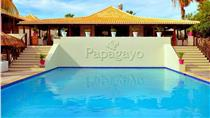 Papagayo Beach Resort (ex lounge resort)
